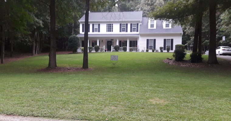 July 2019 Yard of the Month